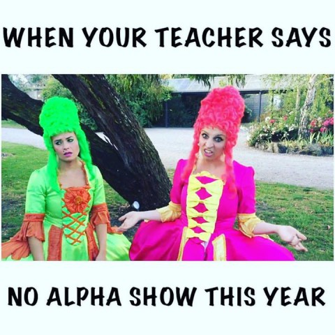 Don't take no for an answer! Get an Alpha Show today!!   #BOOKNOW  #alphashows  …